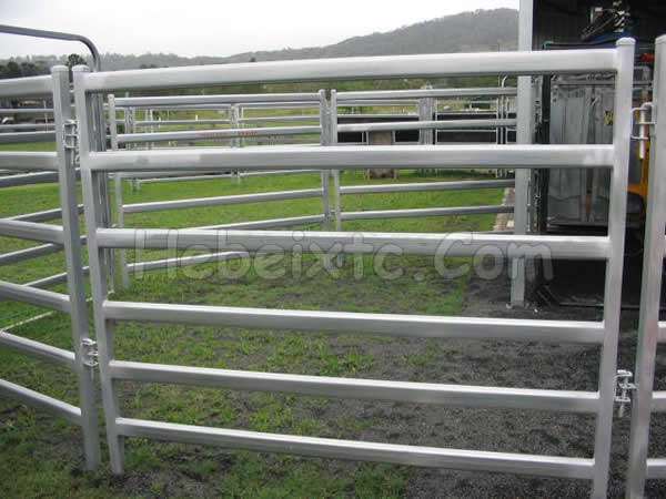 Cattle rail fence